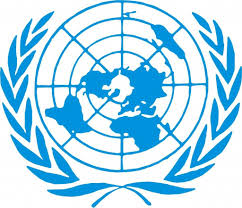 Essential Compliance with the UN Disability Convention