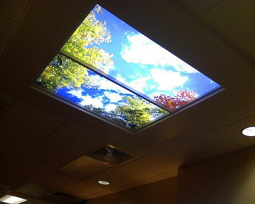 Windows and Skylights - What is part of a roof?