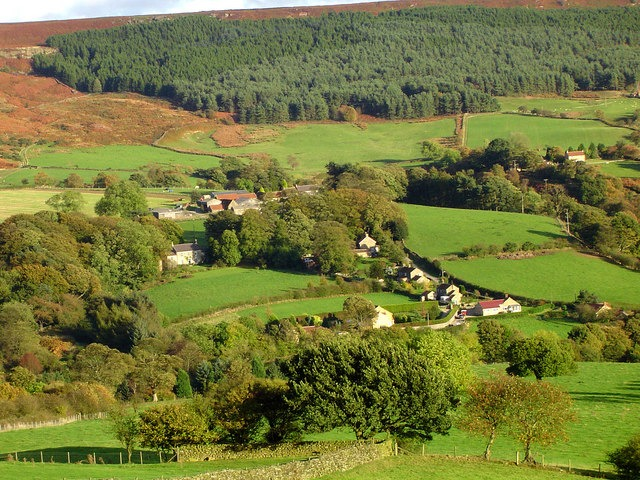 Shared Equity and Rural Housing Burdens